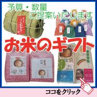 お米のギフト